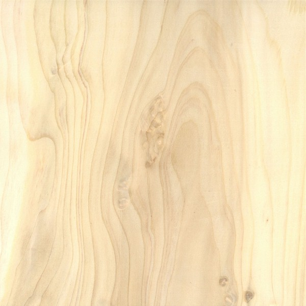 White Cedar Lumber ~ Wood publish with glogster