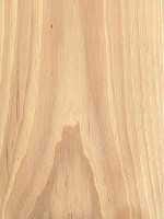 Nutmeg Hickory (sealed)