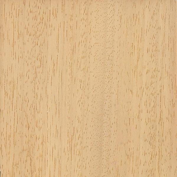 Obeche the wood database lumber identification hardwood