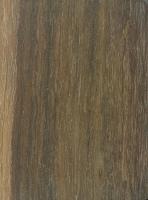 Pau Santo (Zollernia paraensis)