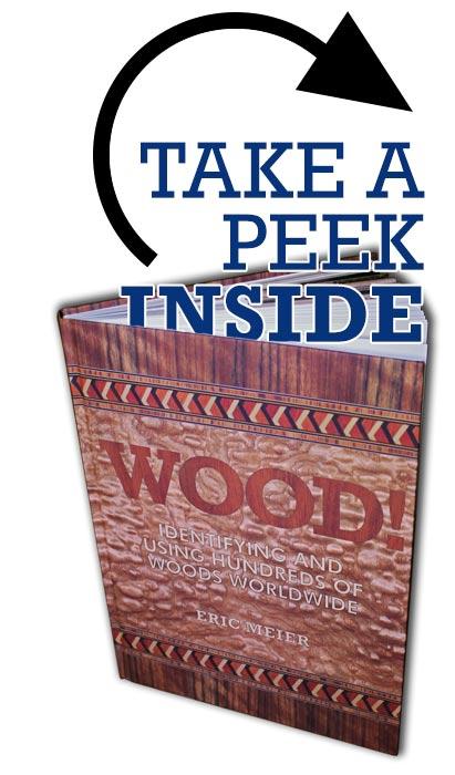 peek-inside