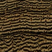 Pheasantwood (endgrain 10x)