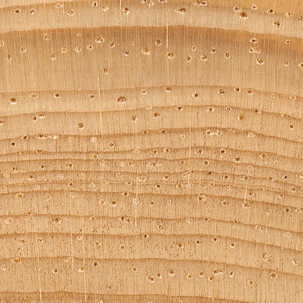 Pinyon pine the wood database lumber identification