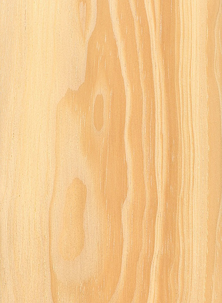 Pine Wood Lumber ~ Pinyon pine the wood database lumber identification