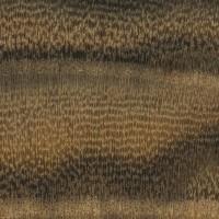 Pistachio (endgrain 10x)