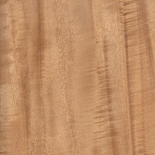 Primavera The Wood Database Lumber Identification