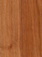 Algarrobo Blanco The Wood Database Lumber