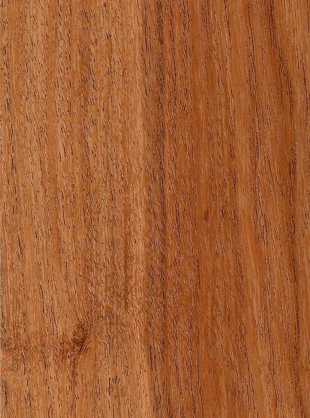 Prosopis Juliflora The Wood Database Lumber