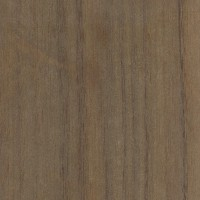 Queensland Walnut (sanded)