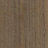 Queensland Walnut (Endiandra palmerstonii)