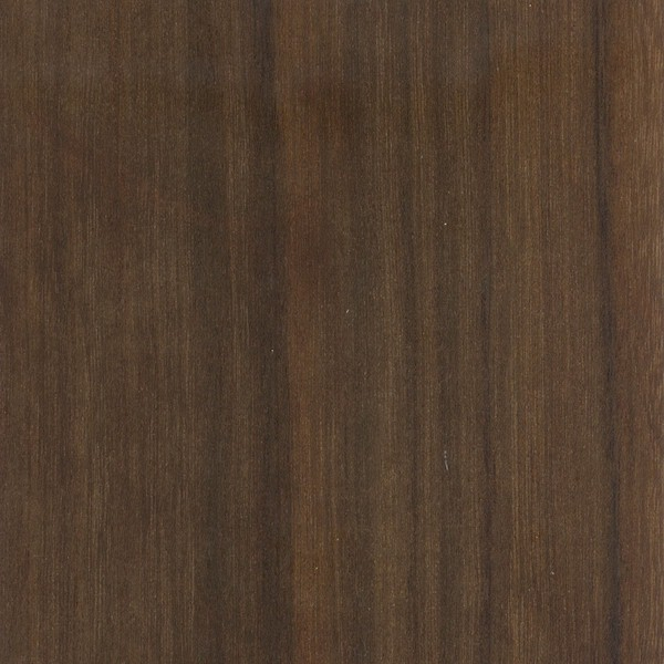 Black walnut the wood database lumber identification