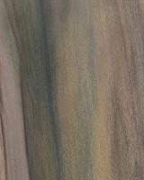 Rainbow Poplar (sanded)