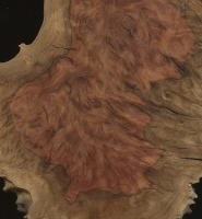 Red Mallee burl (sealed)