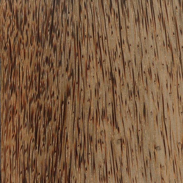 Red Palm The Wood Database Lumber Identification Monocot