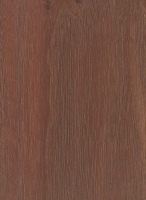 Red River Gum (Eucalyptus camaldulensis)