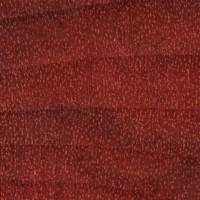 Redheart (endgrain 10x)