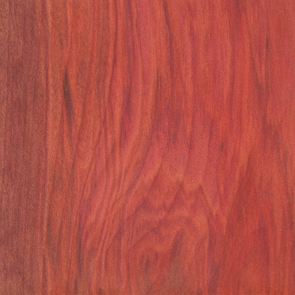 Image Result For Wood Stain Pen
