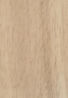 Rubberwood (Hevea brasiliensis)