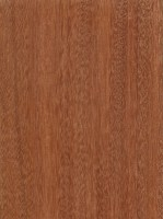 Santos Mahogany (Myroxylon balsamum)