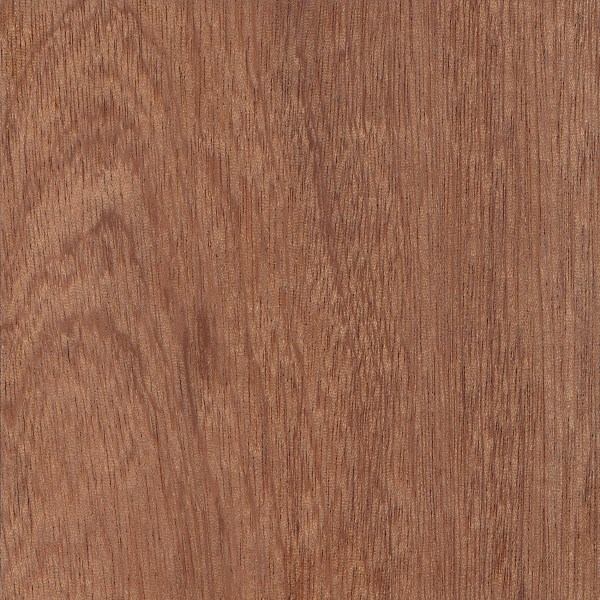 Sapele the wood database lumber identification hardwood