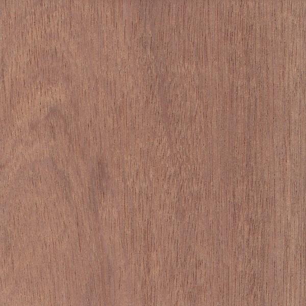 Sapele The Wood Database Lumber Identification Hardwood