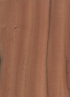 Quebracho (Schinopsis balansae)
