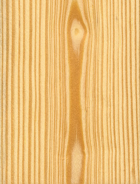 Scots Pine The Wood Database Lumber Identification: pine tree timber