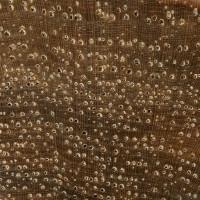 Shellbark Hickory (endgrain 10x)