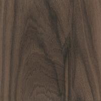 Siamese Rosewood (Dalbergia cochinchinensis)