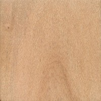 Northern Silky Oak (flatsawn, sanded)