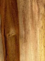 Sissoo (with sapwood)