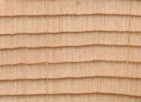 Sitka Spruce (endgrain 10x)