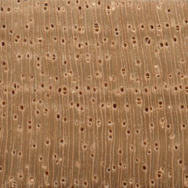 Spanish Cedar The Wood Database Lumber Identification Hardwood