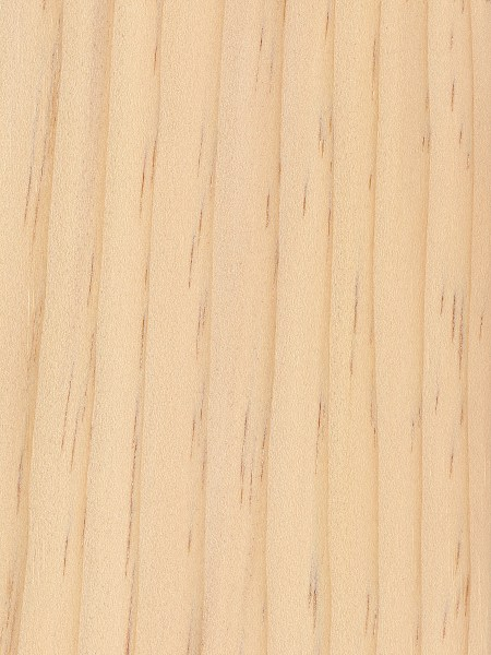 Sugar Pine The Wood Database Lumber Identification
