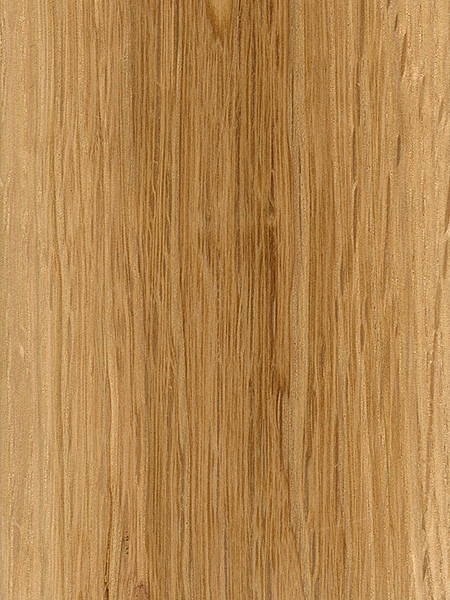 Swamp White Oak  The Wood Database - Lumber Identification (Hardwood)