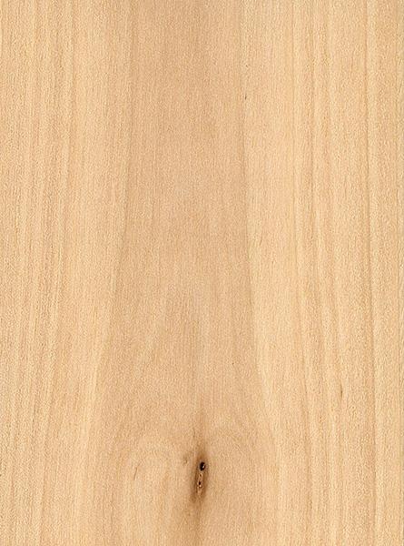 Sweet birch the wood database lumber identification for Berch wood