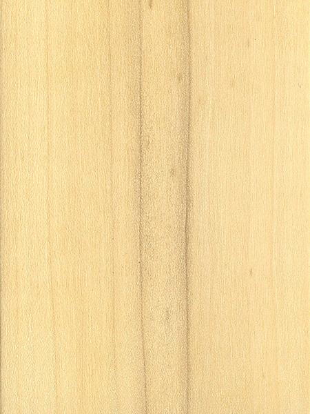Sweetbay The Wood Database Lumber Identification