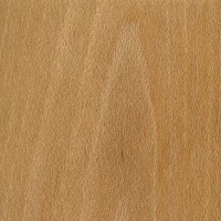 Sycamore: flatsawn (sealed)