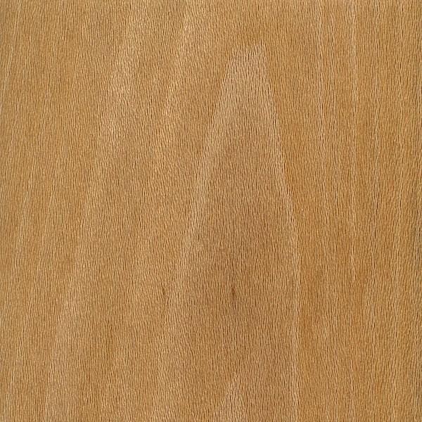 Sycamore The Wood Database Lumber Identification