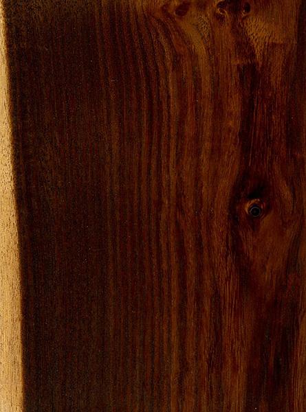 Texas ebony the wood database lumber identification