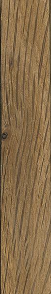 Turkey oak the wood database lumber identification
