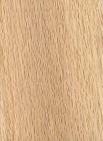 Water Oak (sanded)