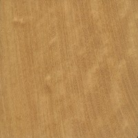 West Indian Satinwood (sealed)