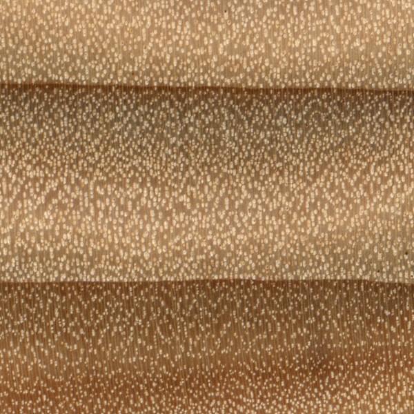 White Poplar | The Wood Database - Lumber Identification ... | 600 x 600 jpeg 137kB