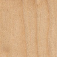 Yellow Birch (sealed)