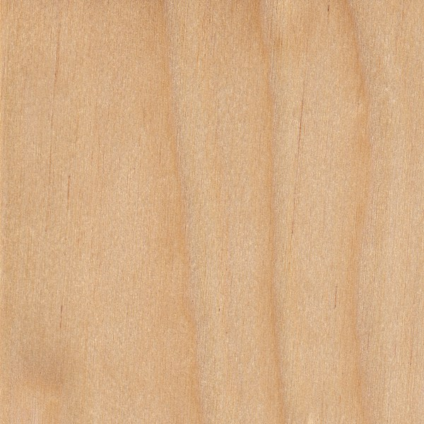 Yellow Wood Lumber ~ Yellow birch the wood database lumber identification