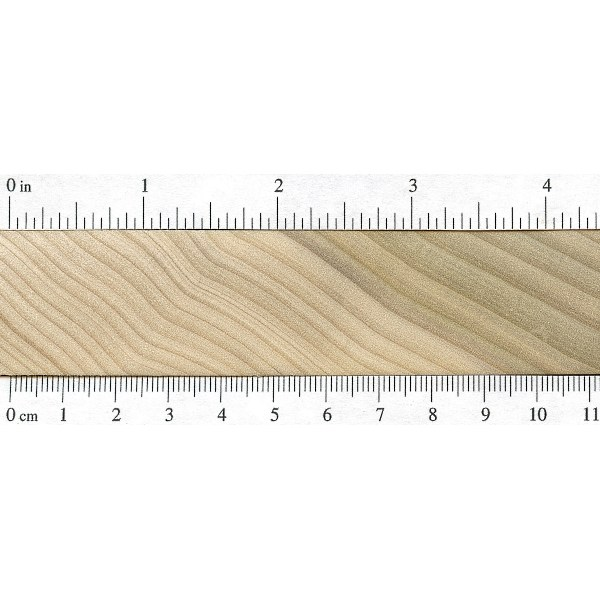 Poplar   The Wood Database - Lumber Identification (Hardwood)
