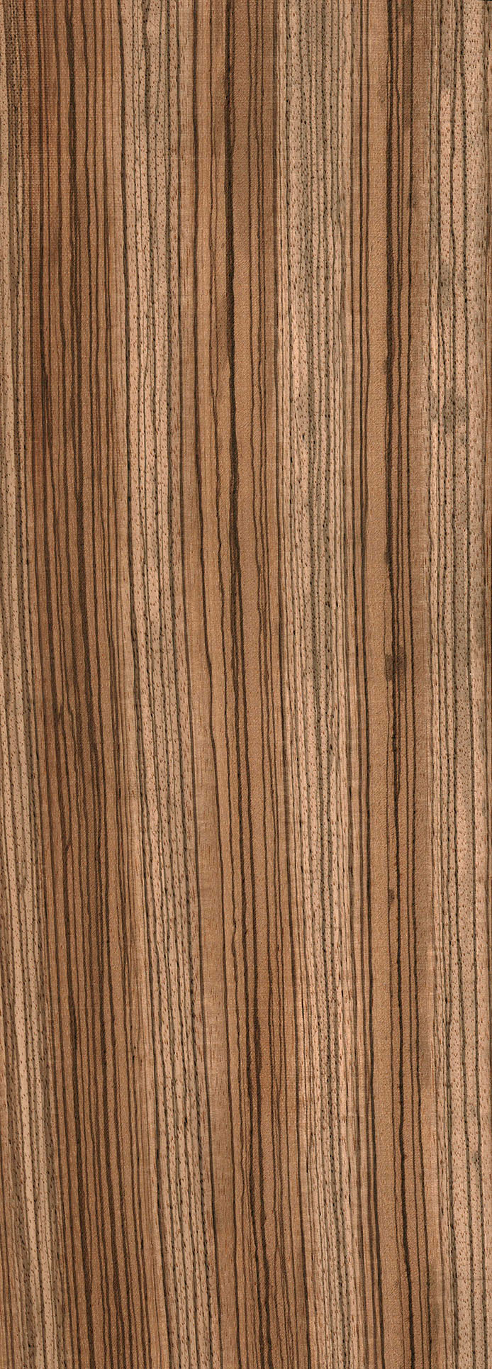 Zebrawood The Wood Database Lumber Identification