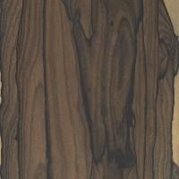 Ziricote (Cordia dodecandra)