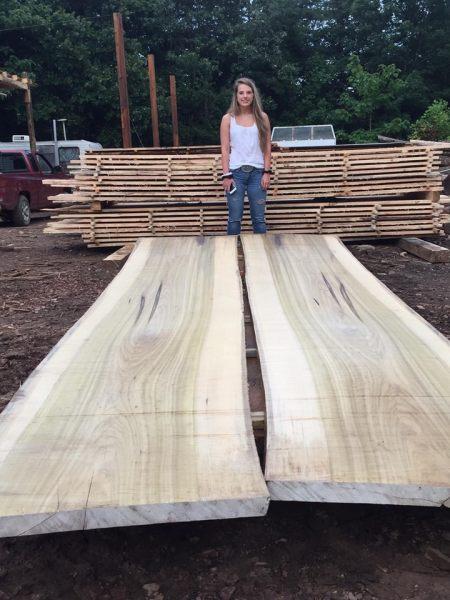 Poplar The Wood Database Lumber Identification Hardwood